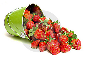Fresh Strawberries Pouring Out Of Pail Stock Photography - Image: 18914592