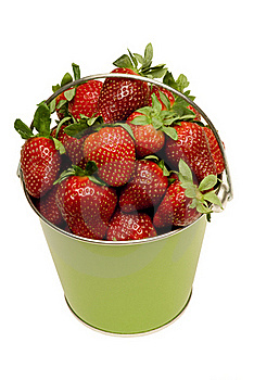 Pail Full Of Fresh Strawberries Royalty Free Stock Image - Image: 18914606