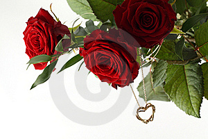 Rose Bouquet And Gold Heart On White Background. Stock Image - Image: 18916811