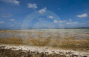 South China Sea Beach Royalty Free Stock Image - Image: 18924456