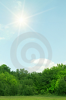 Wood   Sky   Sunrise  Clouds Stock Photos - Image: 18929823