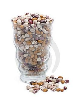 Kidney Bean Stock Photo - Image: 18952180