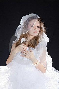Happy Bride On Wedding. Stock Images - Image: 18960904