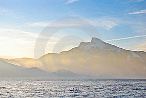Beautiful View On Alps Mountains And Big Lake Royalty Free Stock Photo - Image: 18962445