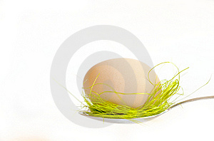 Easter Egg Royalty Free Stock Image - Image: 18984256