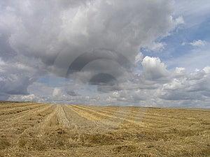 Lato chmury Zdjęcia Royalty Free