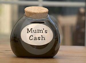 Dinheiro dos Mums Fotos de Stock