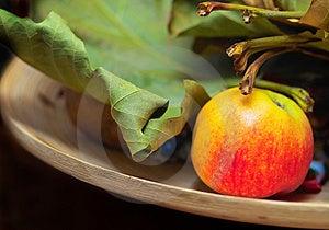 Tasty Apple Stock Images