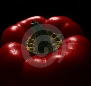Poivron rouge Photos libres de droits
