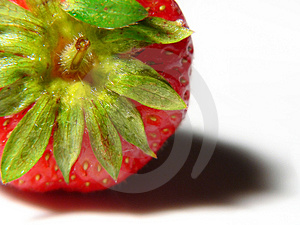 Juicy Strawberry Macro Free Stock Photo