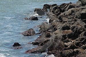 Rocky Coastline Photos libres de droits