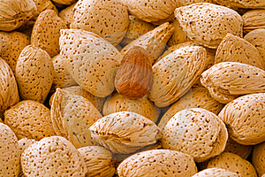 Almonds Stock Image - Image: 19050021