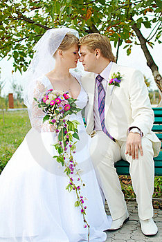 Bride And Groom Hugging Stock Photo - Image: 19054210
