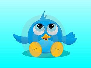 Bluebird Stock Photos - Image: 19058203
