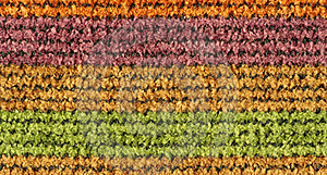Colorful Woven Texture Stock Photos - Image: 19065523