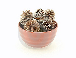 Pine Cones In Brown Bowl Stock Image - Image: 19096791