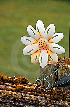 Metal Flower Decoration Royalty Free Stock Image - Image: 19117896