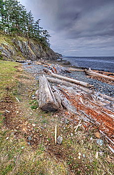 Wilderness Shoreline Royalty Free Stock Images - Image: 19121539