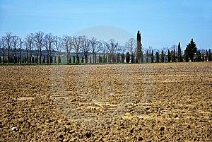 Tuscany Fields Stock Images - Image: 19132674