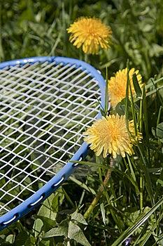 Blue Racket Stock Photos - Image: 19134363