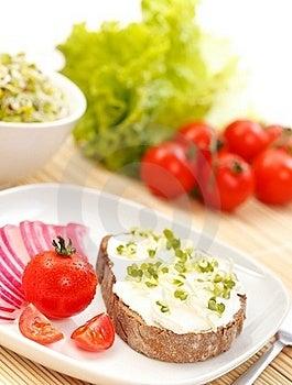 Tasty Sandwich Royalty Free Stock Image - Image: 19134696