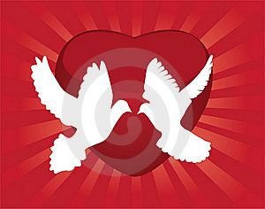 Doves Stock Photos - Image: 19179433