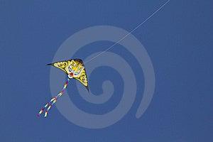 Tiger Kite Stock Images - Image: 19181054