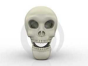 3D Human Skull Stock Photos - Image: 19181743
