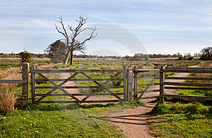 Field Gate Stock Image - Image: 19187171