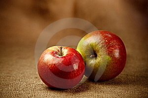 Fresh Apples Stock Images - Image: 19189554
