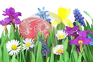 Easter Egg On A Spring Meadow Royalty Free Stock Images - Image: 19193529