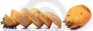 Potato Royalty Free Stock Photography - Image: 19198037
