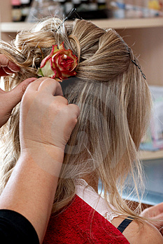 Rose In Hair Royalty Free Stock Photography - Image: 1920447