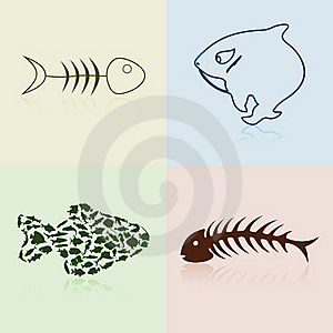 Collection Of Fishes Stock Photography - Image: 19203162