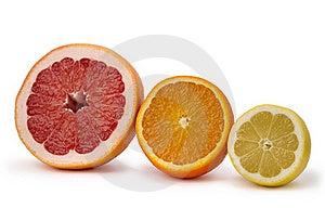 Grapefruit, Orange And Lemon Stock Images - Image: 19212034