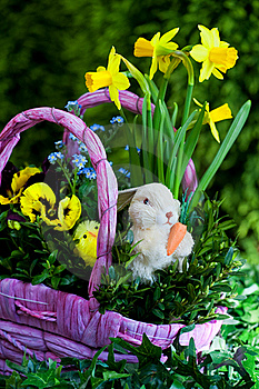 Easter Compositions Stock Images - Image: 19219254