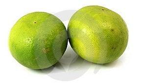 Green Lime Stock Photos - Image: 19227643