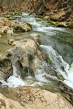 Mountain River In Forest Royalty Free Stock Image - Image: 19237226