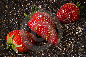 Strawberries With Icing Sugar Royalty Free Stock Photography - Image: 19238037