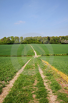 An English Rural Landscape Stock Photography - Image: 19245132