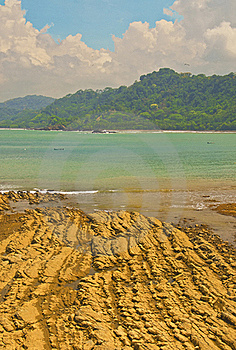 Coral Beach In The Tropics Royalty Free Stock Photo - Image: 19248225