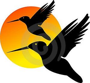 Birds Logo Royalty Free Stock Photo - Image: 19272975
