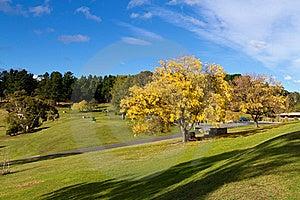 Park, Tasmania Stock Images - Image: 19283384