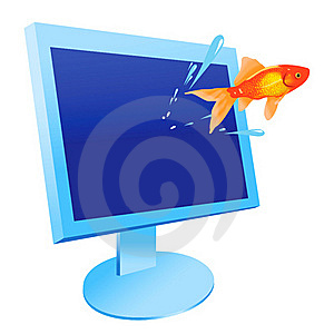 Fish And Monitor Stock Photos - Image: 19283493