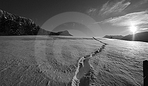 Tracks Of Hike Royalty Free Stock Images - Image: 19288279