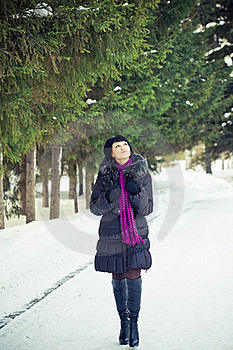 Woman In Wintry Coat Stock Images - Image: 19289234