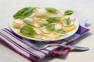 Radish And Potato Salad Stock Image - Image: 19291271