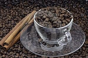 Coffee Bean Stock Photos - Image: 19297143