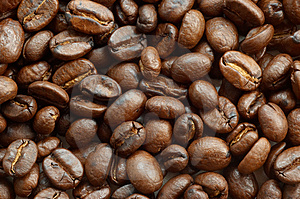 Coffee Beans Texture Stock Photos - Image: 1931863