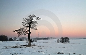 Early Morning Stock Photo - Image: 19300750